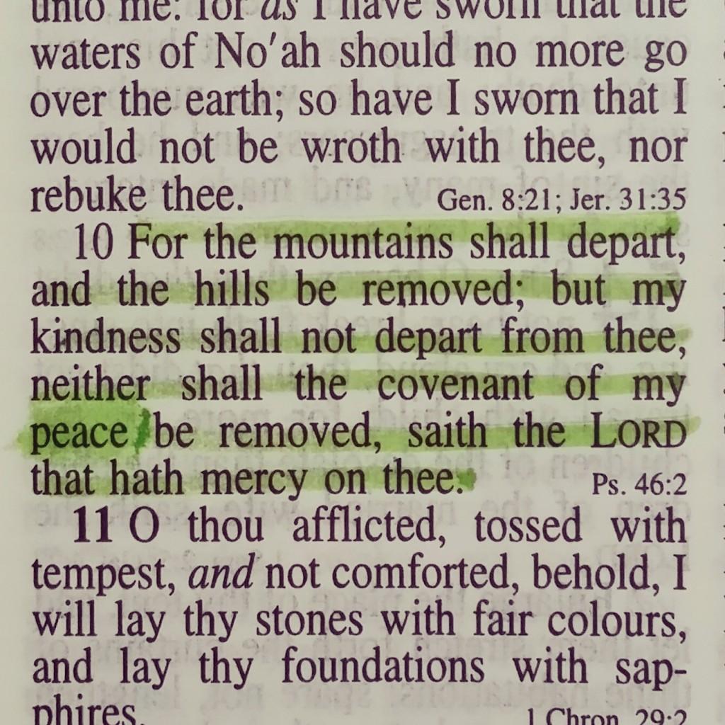 Isaiah 54:10 (KJV)