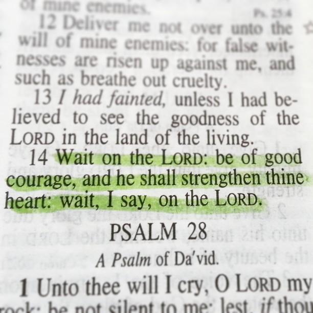 Psalm 27:14 (KJV)