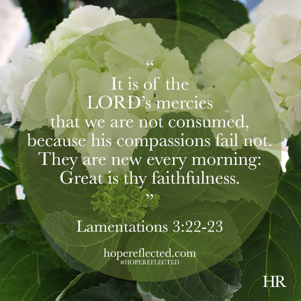 Lamentations 3:23 the importance of faithfulness