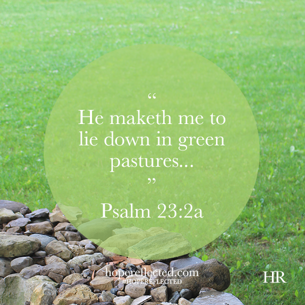 psalm 23:2 he maketh me to lie down in green pastures