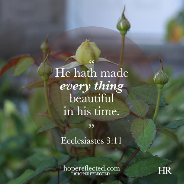 ecclesiastes 3:11 God's perfect timing