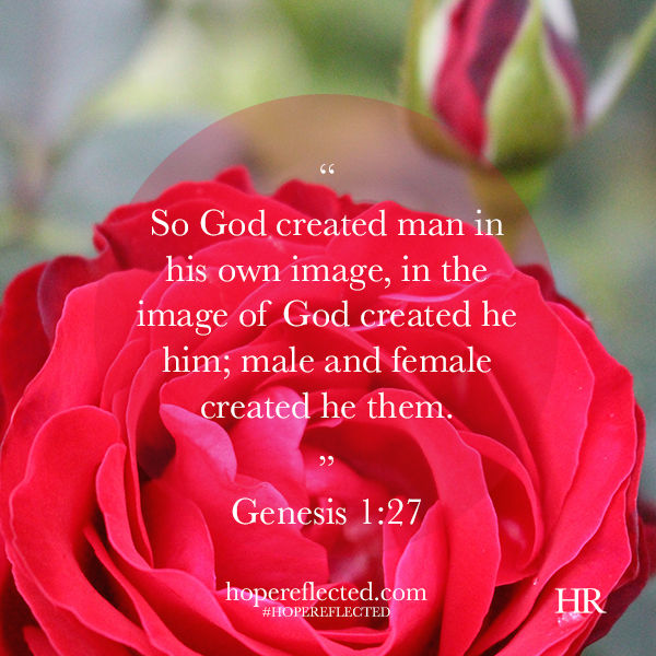 we are made in God's image