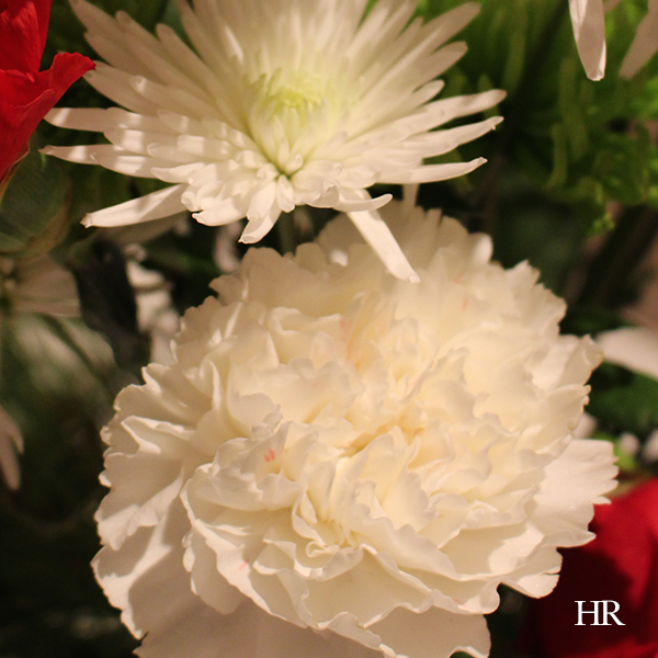 white flowers Christmas flower arrangement
