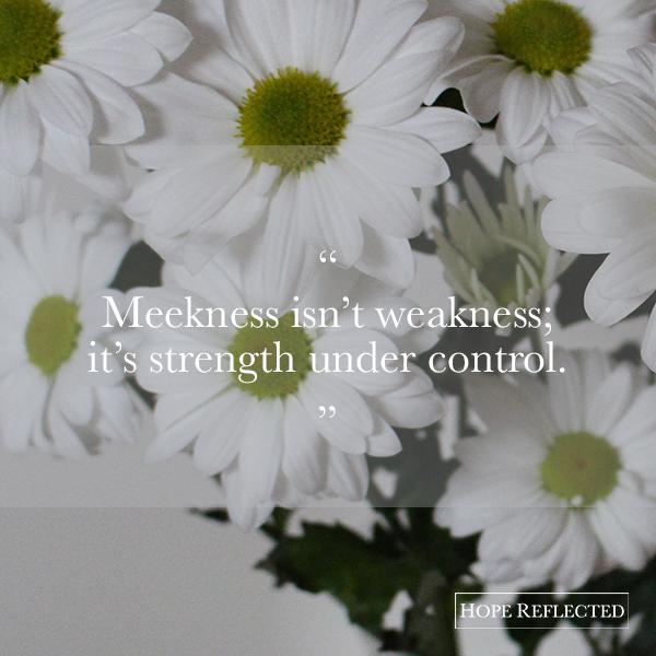 meekness isn't weakness; it's strength under control.