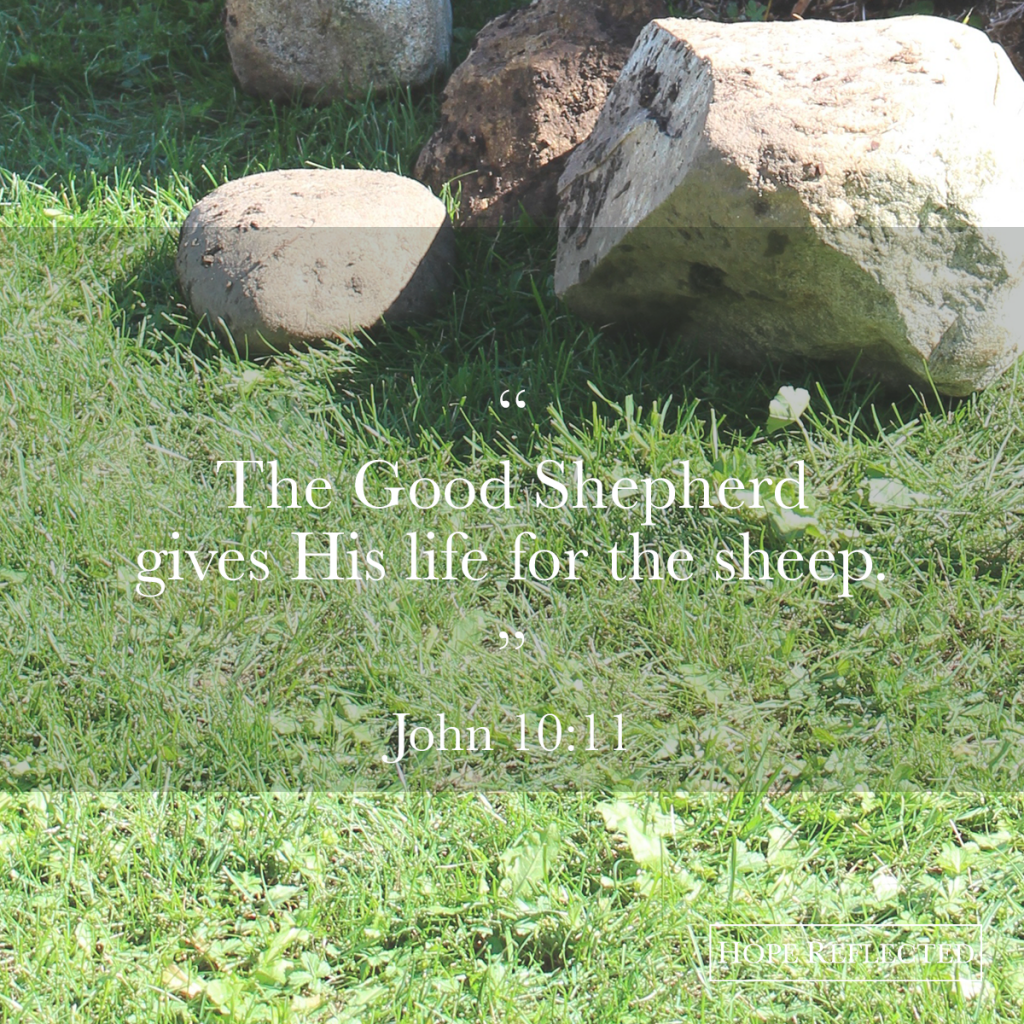 Jesus Christ is the Good Shepherd | Hope Reflected