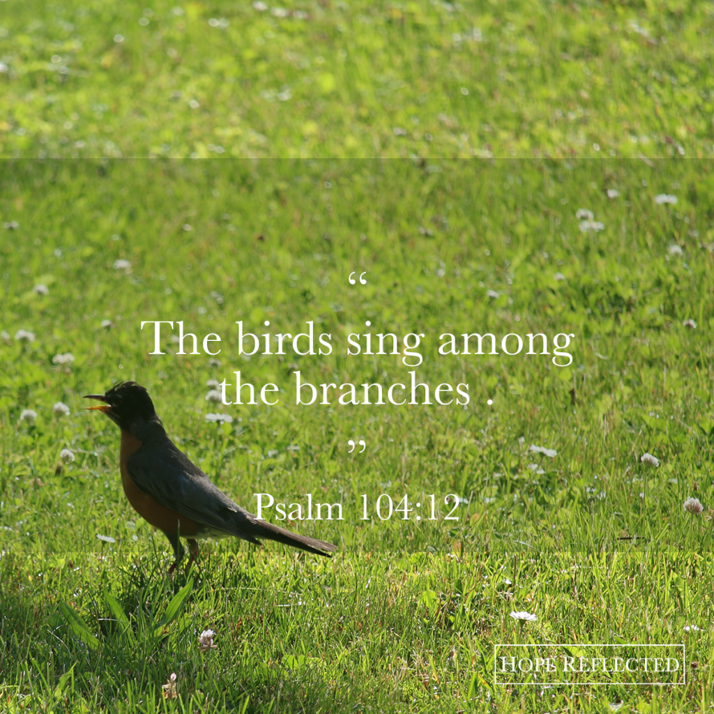The birds sing among the branches. Psalm 104:12 Watch your words | See more at hopereflected.com