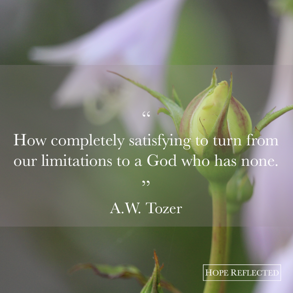 """How completely satisfying to turn from our limitations to a God Who has none."" A. W. Tozer 