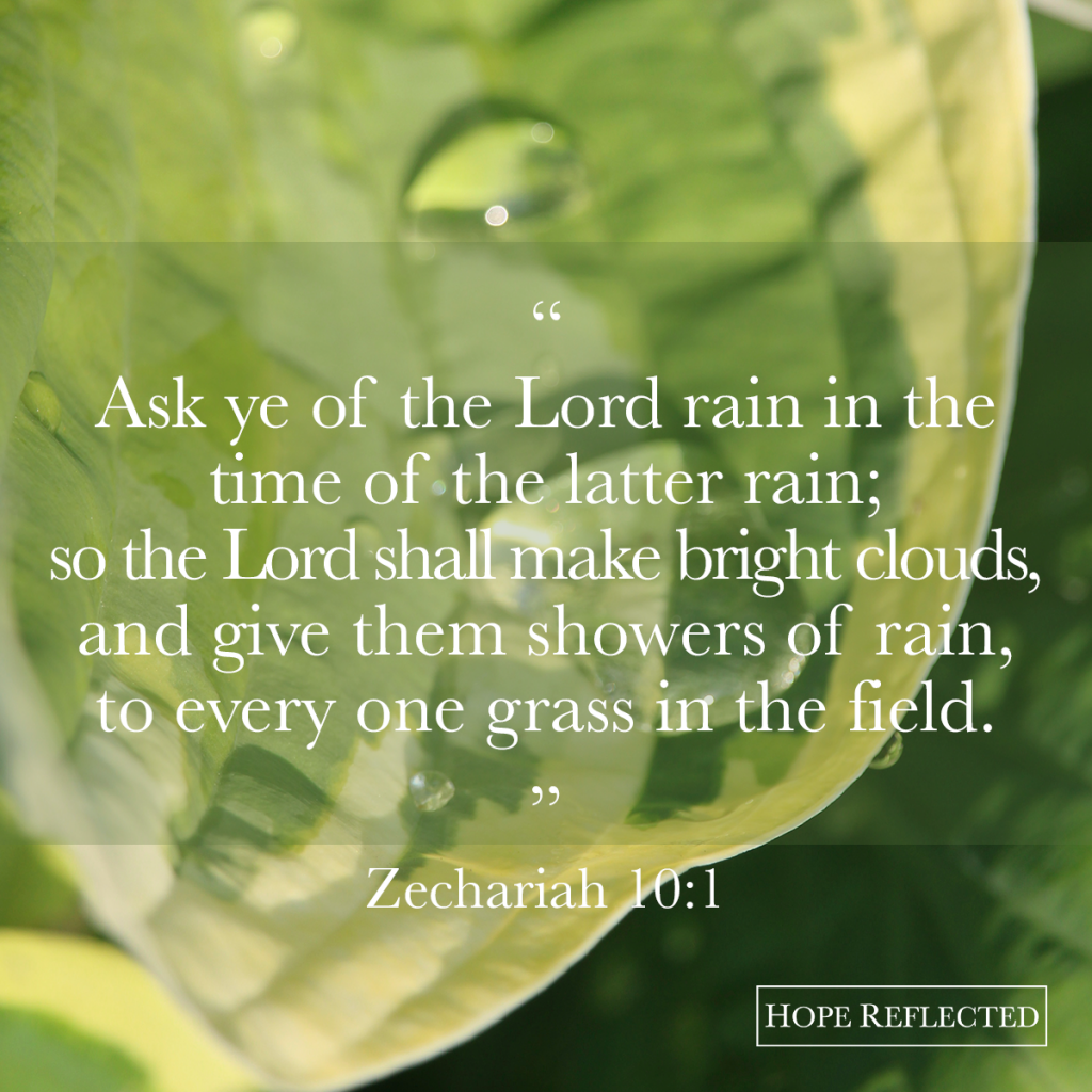 """Ask ye of the Lord rain in the time of the latter rain."" Zechariah 10:1 