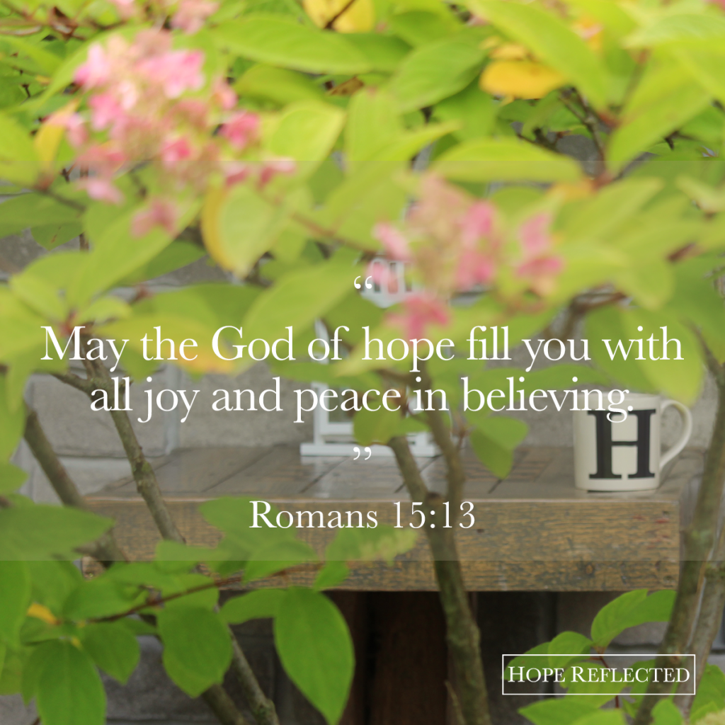 May the God of hope fill you with all joy and peace in believing. (Romans 15:13) | See more at hopereflected.com