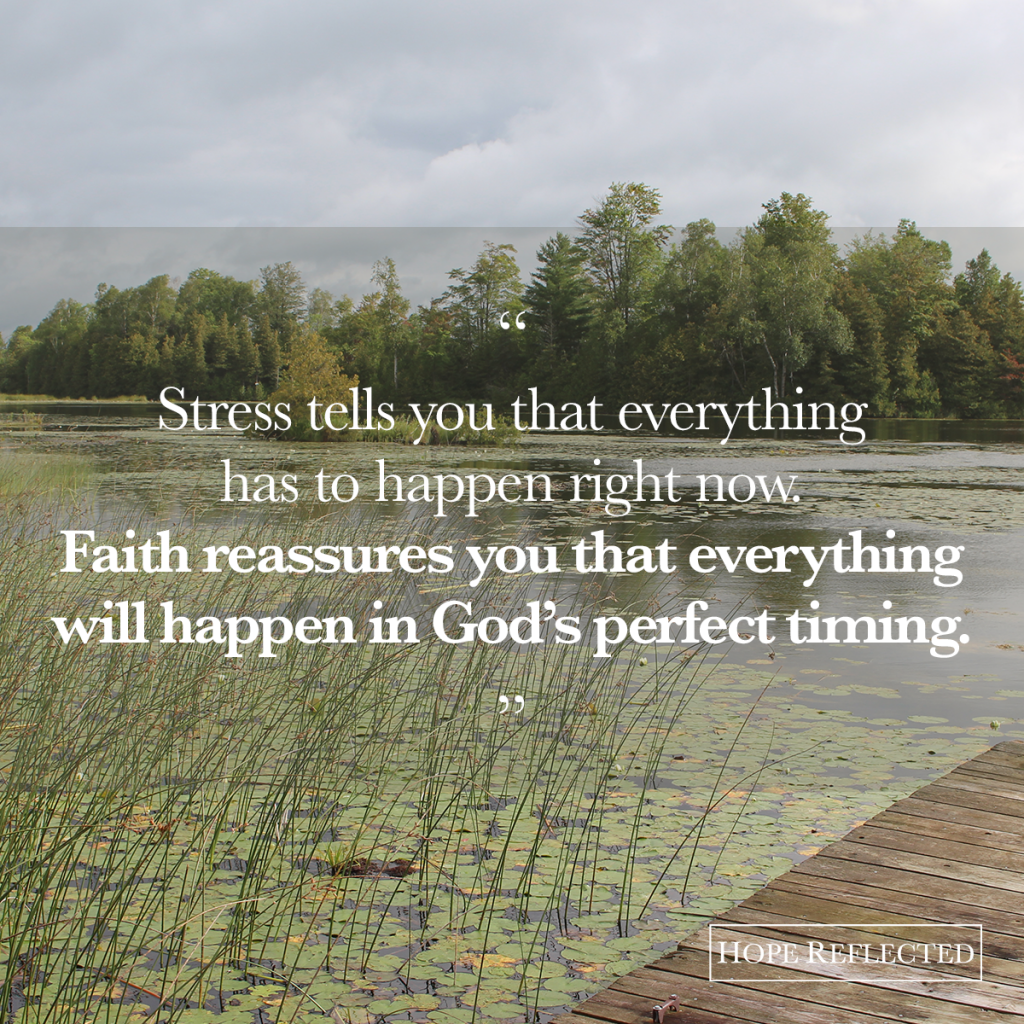 Stress tells you that everything has to happen right now. Faith reassures you that everything will happen in God's perfect timing. | See more at hopereflected.com