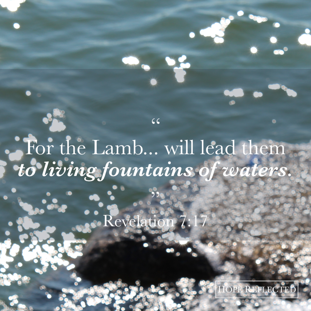 """For the Lamb... will lead them to living fountains of waters."" (Revelation 7:17) 