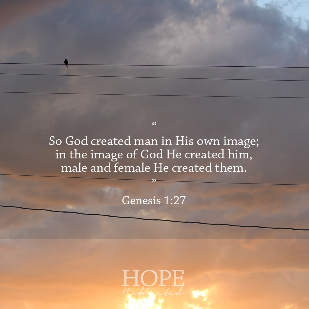 Verses for when you feel insecure (Genesis 1:27) | See more at hopereflected.com
