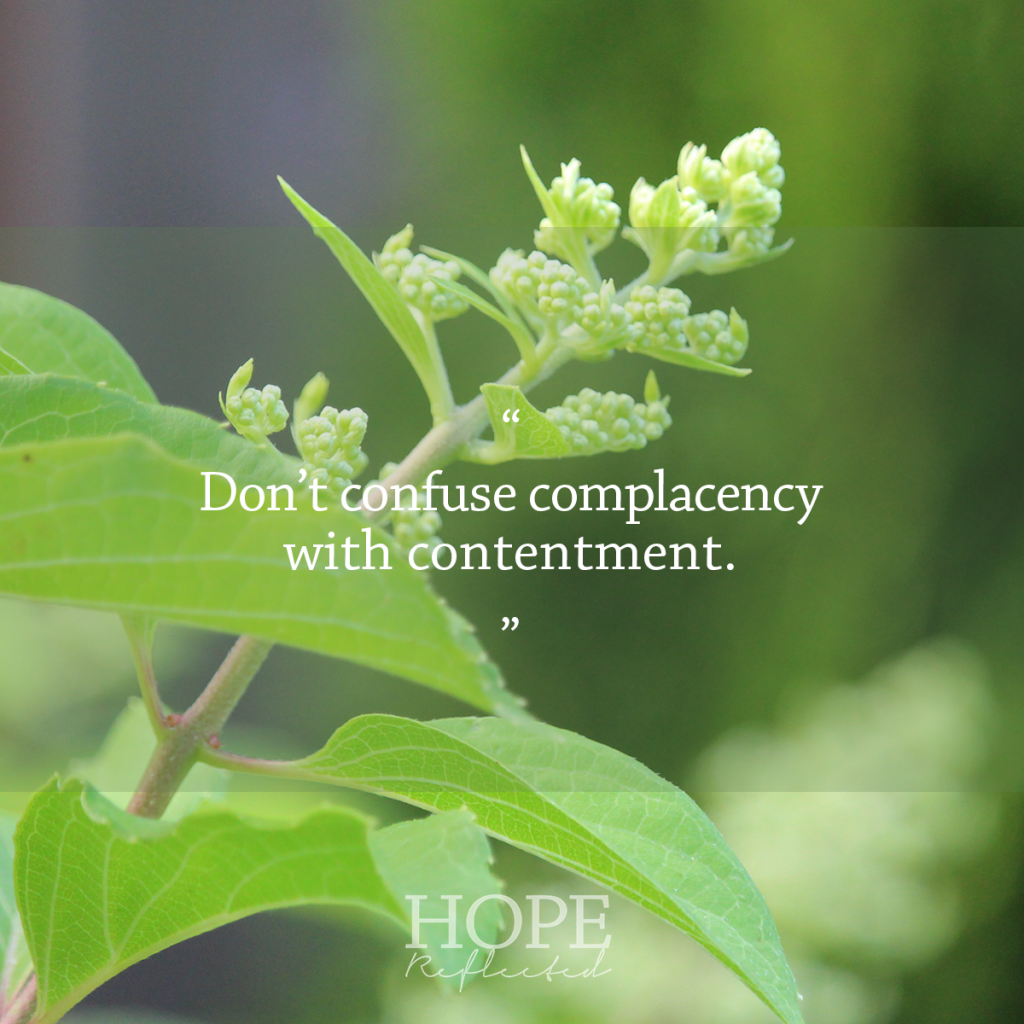 Wednesday Wisdom: Don't confuse complacency with contentment. | See more at hopereflected.com