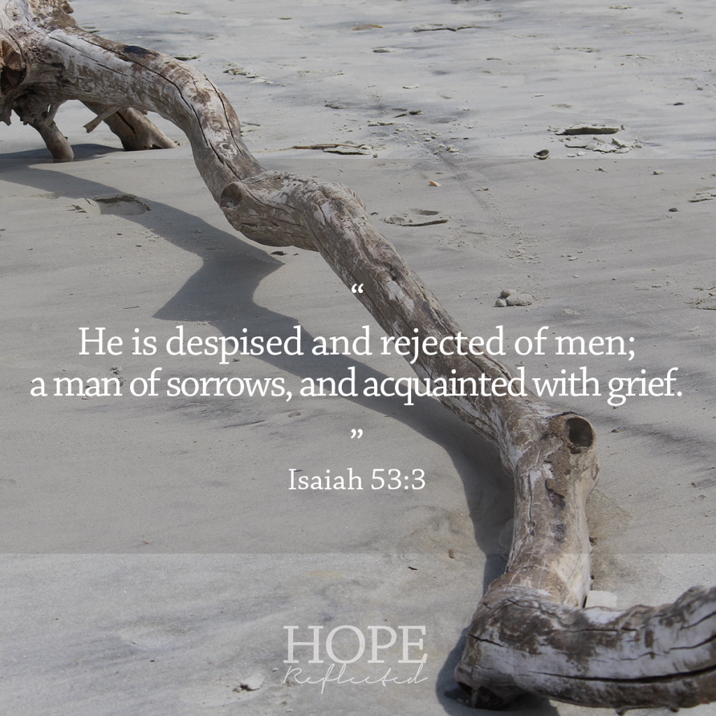 He is despised and rejected of men; a man of sorrows, and acquainted with grief. | See more at hopereflected.com
