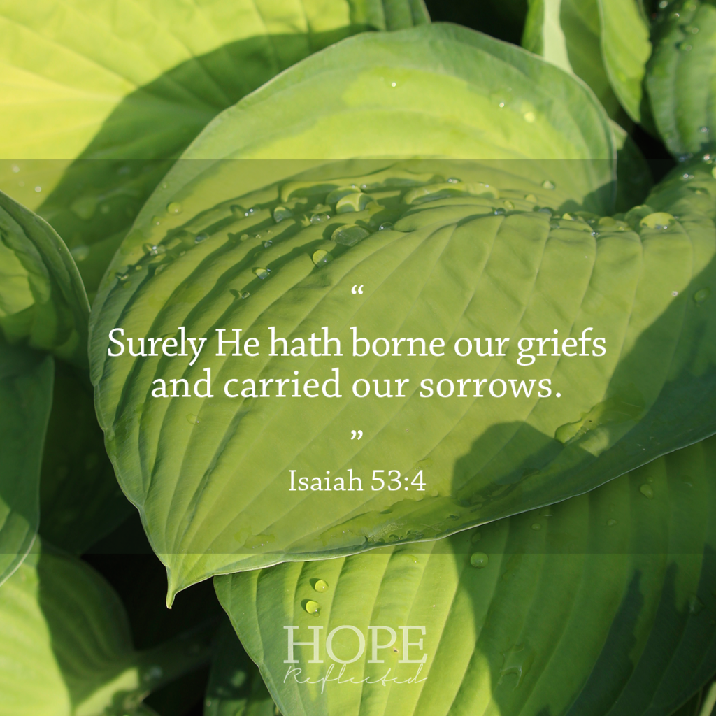 """Surely He hath borne our griefs and carried our sorrows."" Isaiah 53:4 