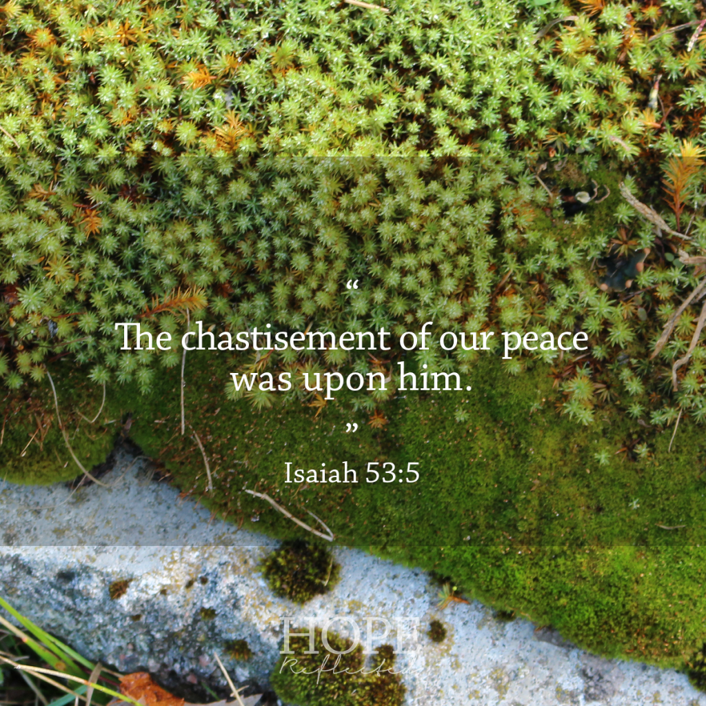 """The chastisement of our peace was upon him."" Isaiah 53:5 
