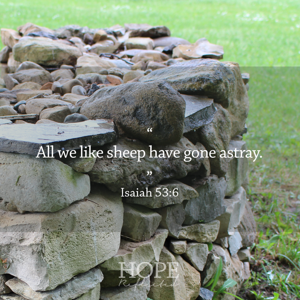 """All we like sheep have gone astray."" (Isaiah 53:6) 