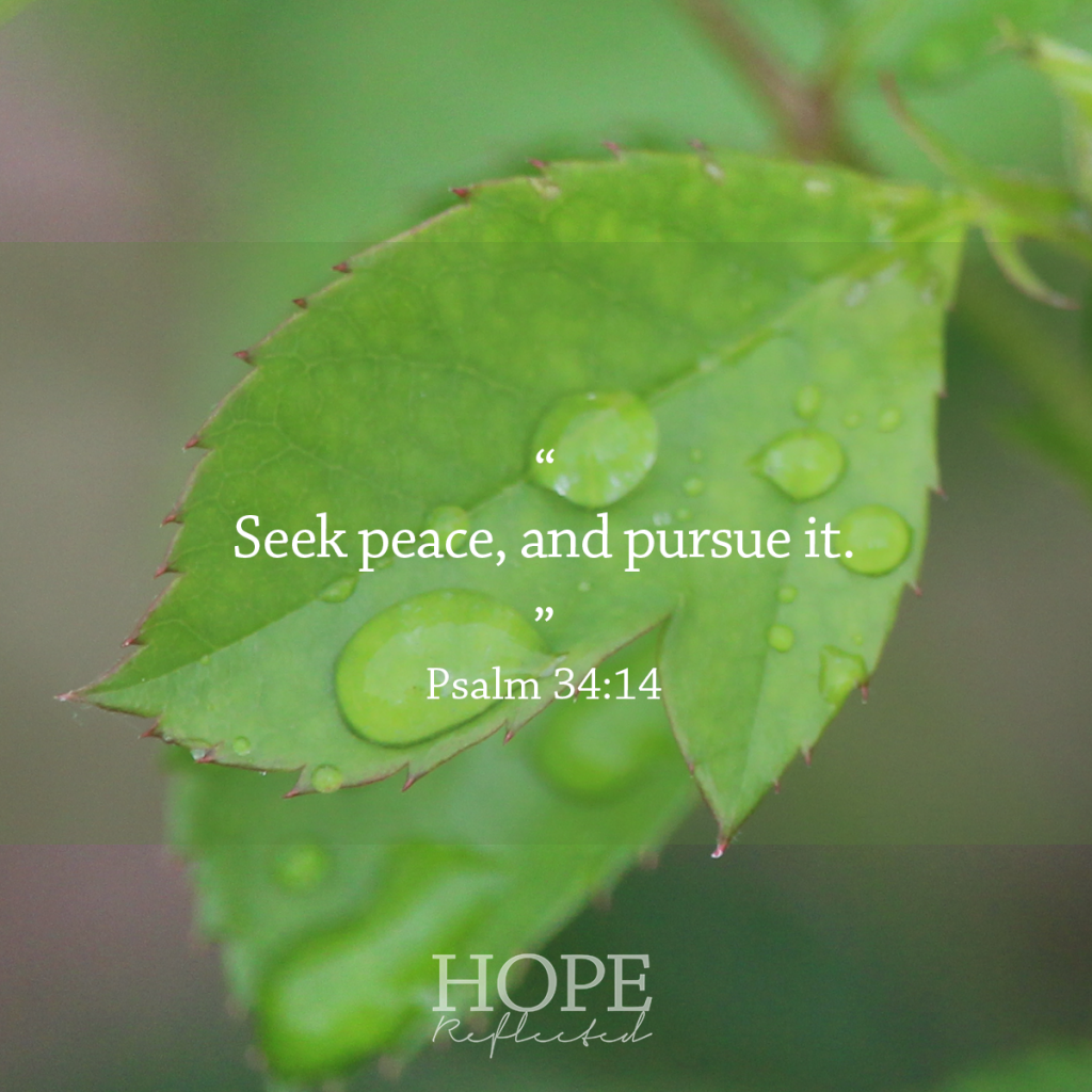 Seek peace, and pursue it. (Psalm 34:14) | Peace | Read more at hopereflected.com