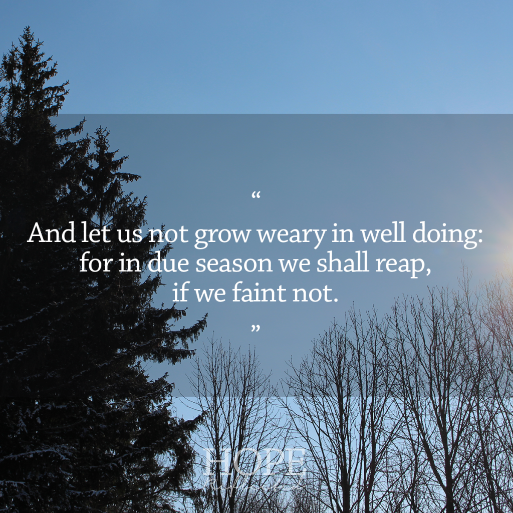 """""""Let us not grow weary in well doing"""" (Galatians 6:9) Thoughts on overcoming 