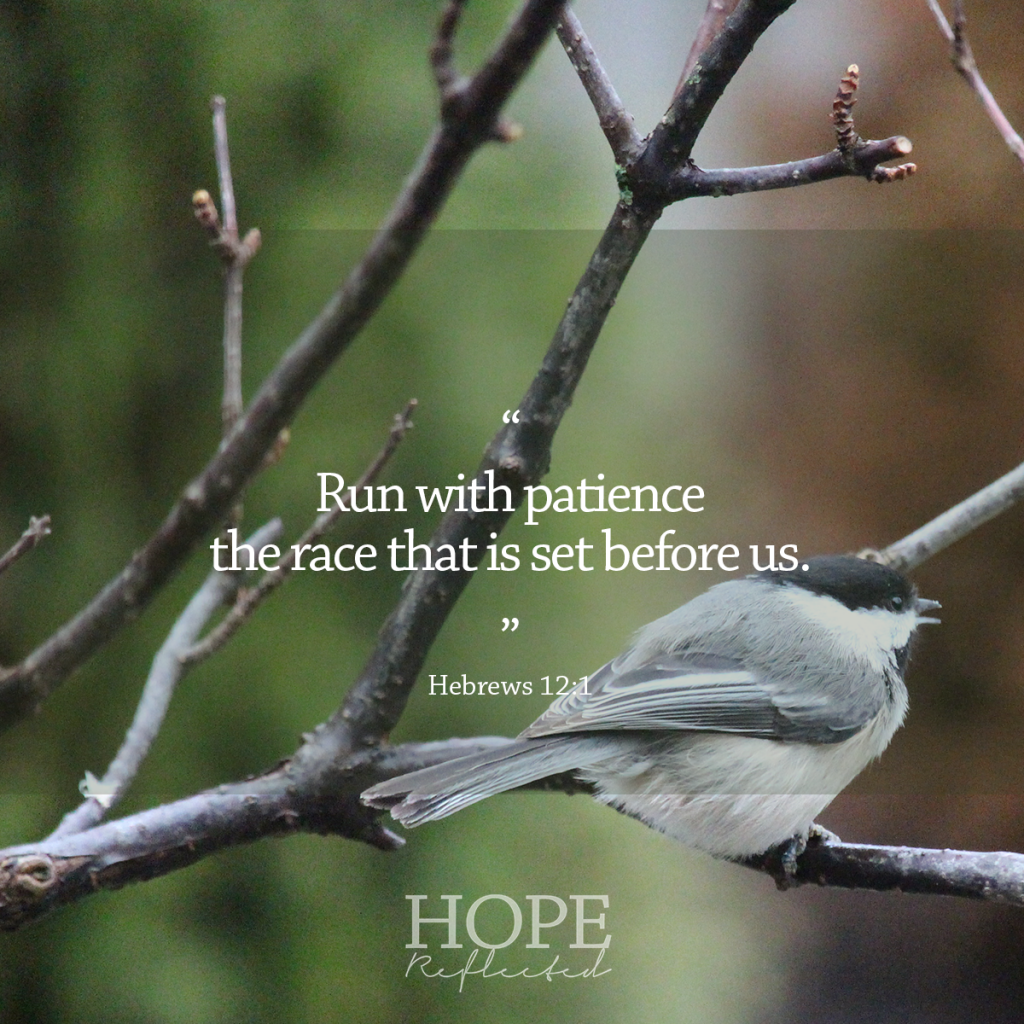 "Perseverance: ""Run with patience the race that is set before us."" (Hebrews 12:1) 