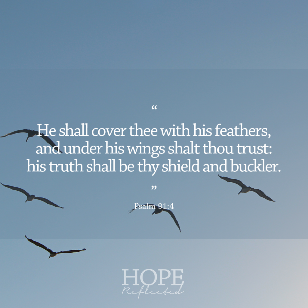 """He shall cover thee with his feathers, and under his wings shalt thou trust: his truth shall be thy shield and buckler."" (Psalm 91:4) What is a buckler? 