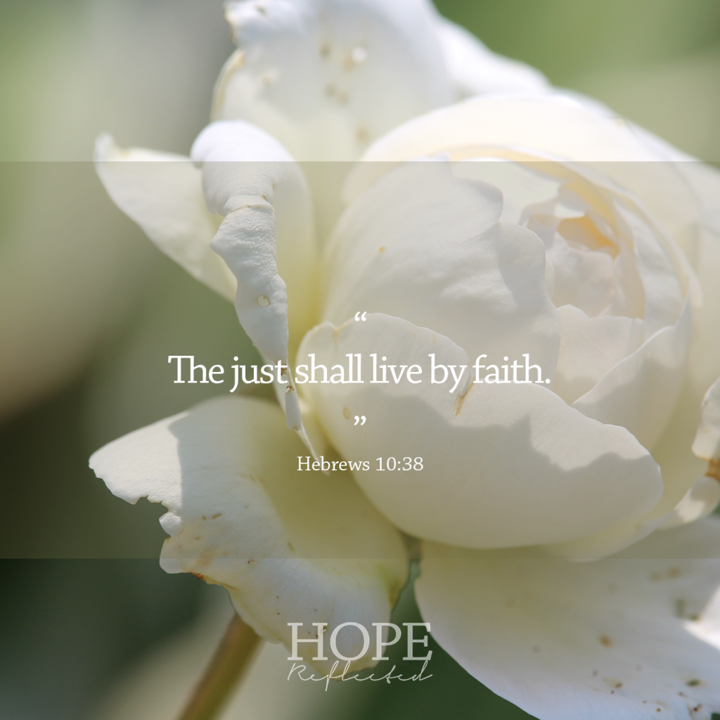 """The just shall live by faith."" (Hebrews 10:38) 