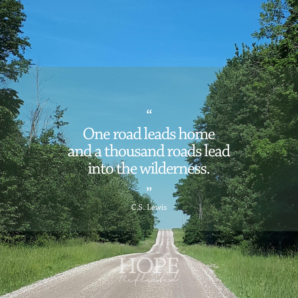 """One road leads home and a thousand roads lead into the wilderness."" (C.S. Lewis) 