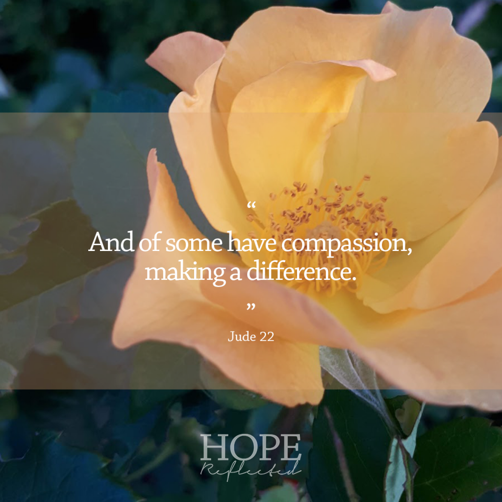"""And of some have compassion, making a difference."" (Jude 22) 