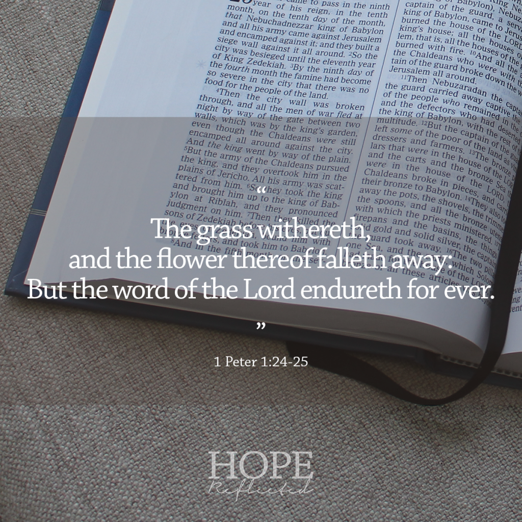 "God's Word has the power to transform! ""The grass withereth, and the flower thereof falleth away: But the word of the Lord endureth for ever."" (1 Peter 1:24-25) 