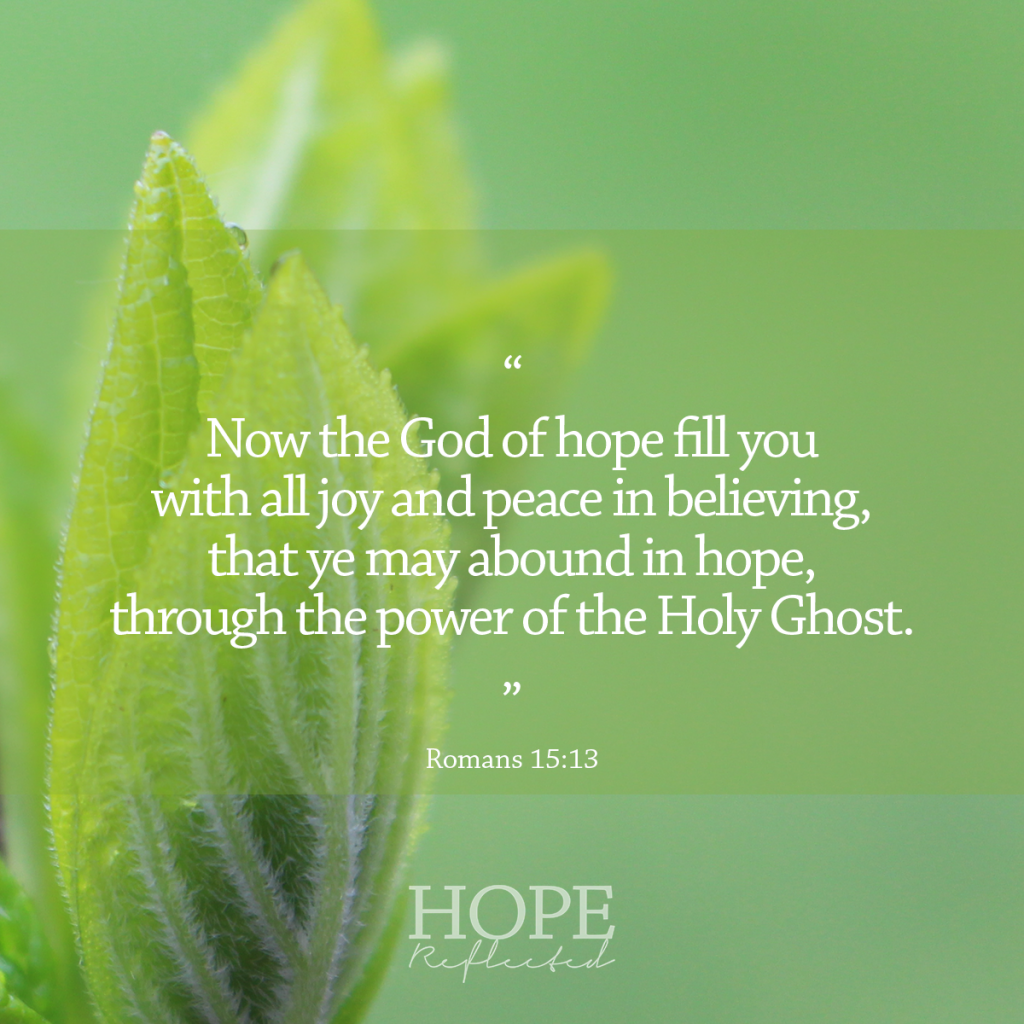 """Now the God of hope fill you with all joy and peace in believing, that ye may abound in hope, through the power of the Holy Ghost."" (Romans 15:13)  