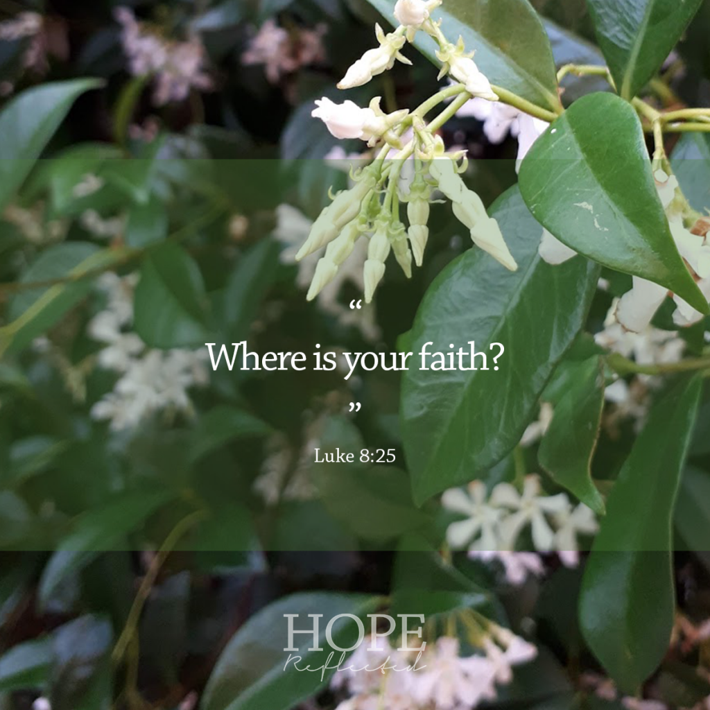 """Where is your faith?"" (Luke 8:25) 