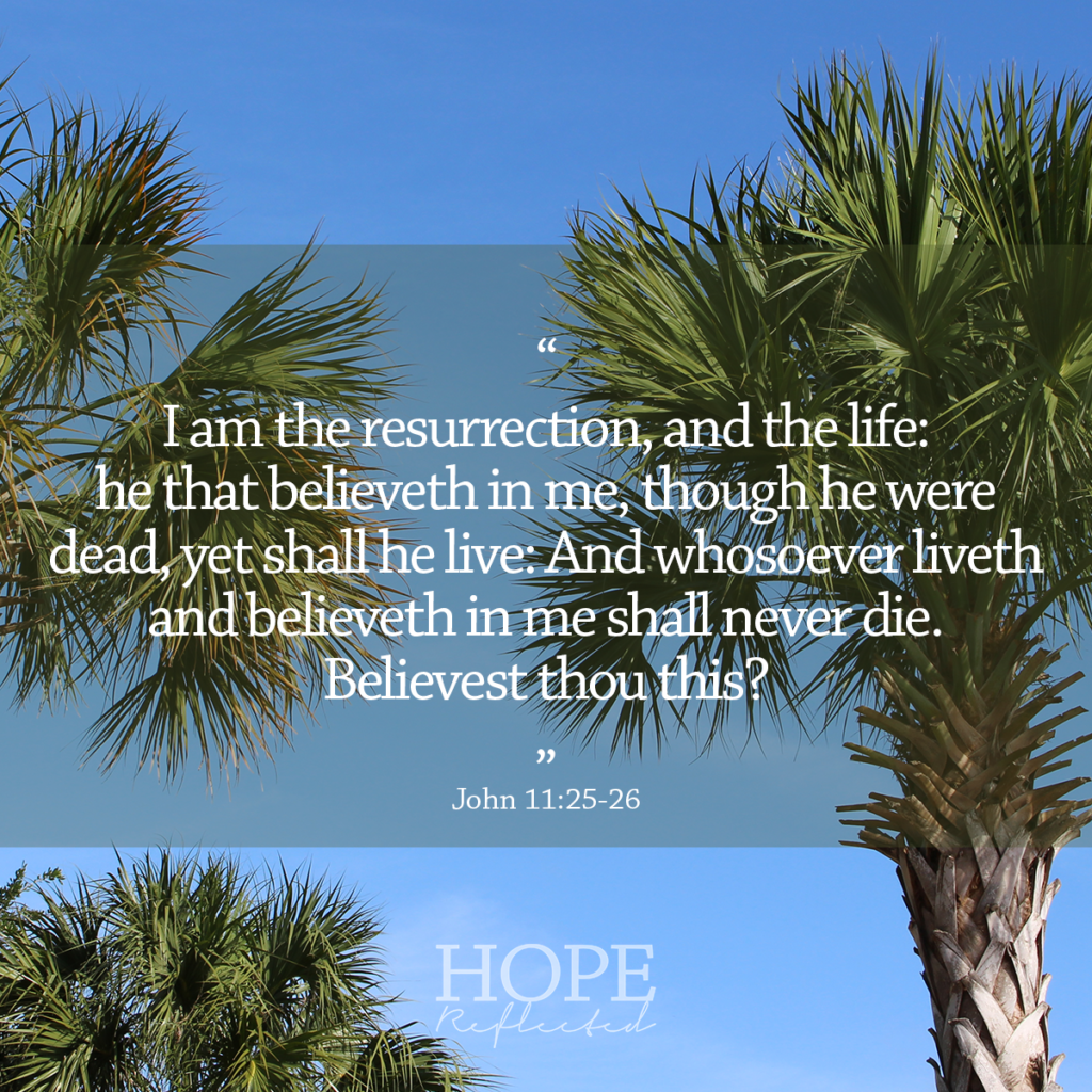 """I am the resurrection, and the life: he that believeth in me, though he were dead, yet shall he live: And whosoever liveth and believeth in me shall never die. Believest thou this?"" (John 11:25-26) 