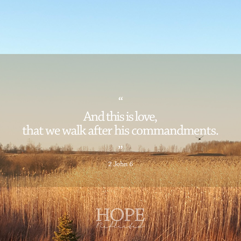 """And this is love, that we walk after his commandments."" (2 John 6) 