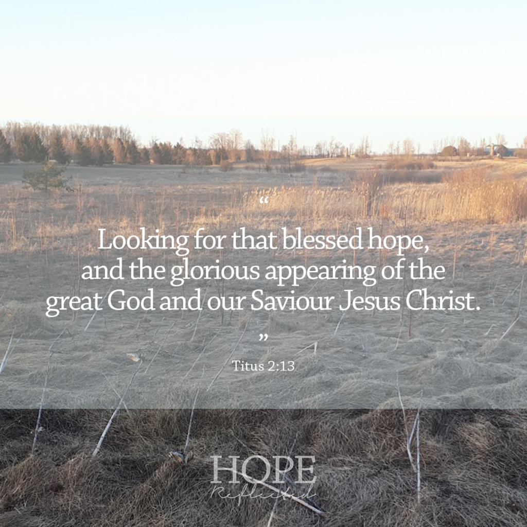 """Looking for that blessed hope, and the glorious appearing of the great God and our Saviour Jesus Christ."" (Titus 2:13) 