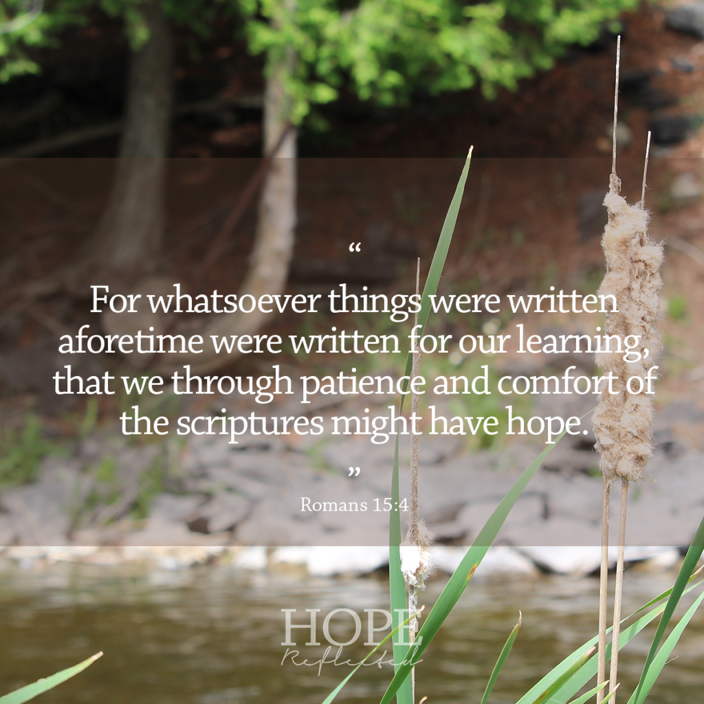 """For whatsoever things were written aforetime were written for our learning, that we through patience and comfort of the scriptures might have hope."" Romans 15:4 