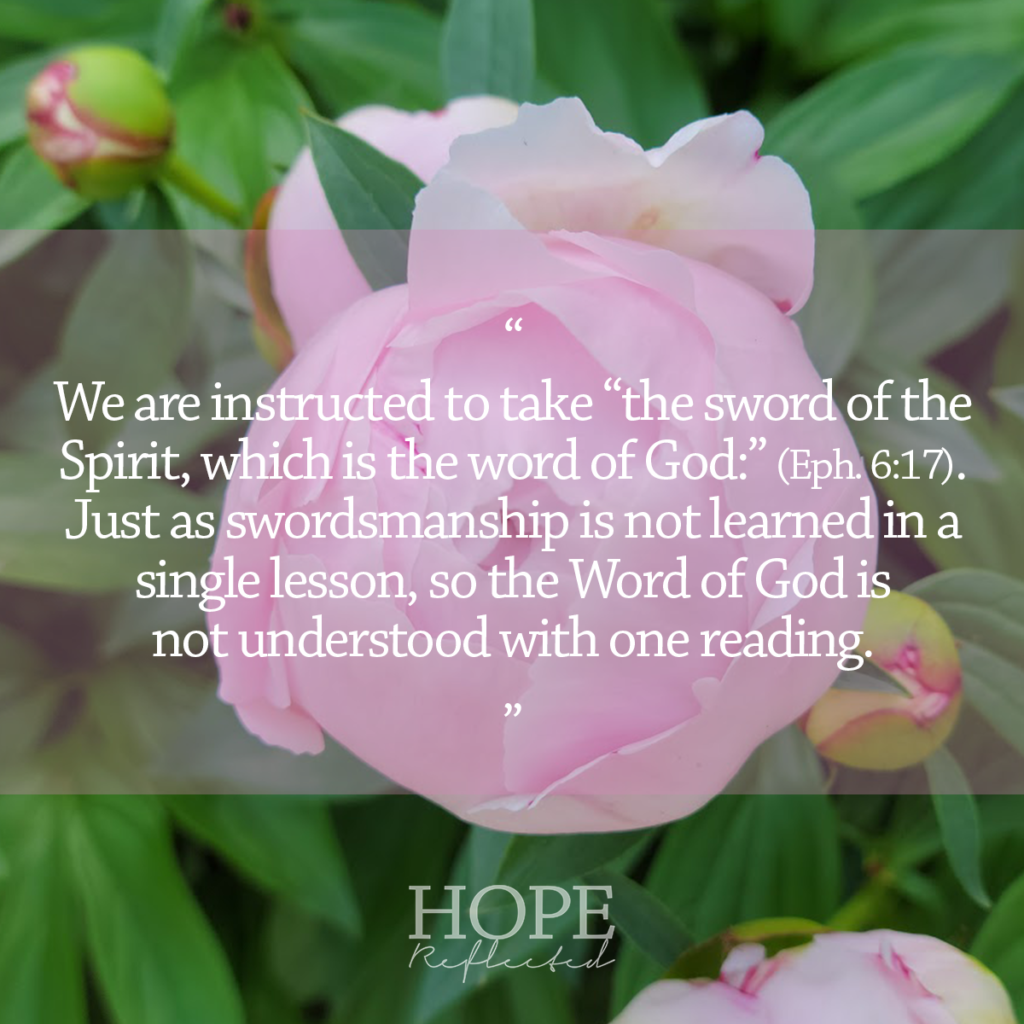 """we are instructed to take """"the sword of the Spirit, which is the word of God:"""" (v. 17). Just as swordsmanship is not learned in a single lesson, so the Word of God is not understood with merely one reading. See more at hopereflected.com"""