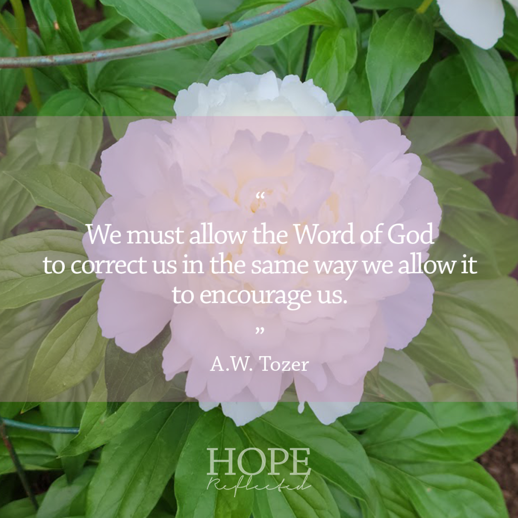 """A.W. Tozer said, """"we must allow the Word of God to correct us the same way we allow it to encourage us."""" Read more at hopereflected.com"""