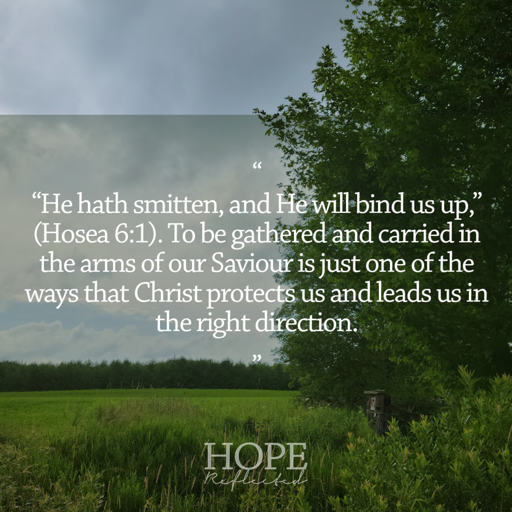 """""""He hath smitten, and He will bind us up,"""" (Hosea 6:1). Read more at hopereflected.com"""