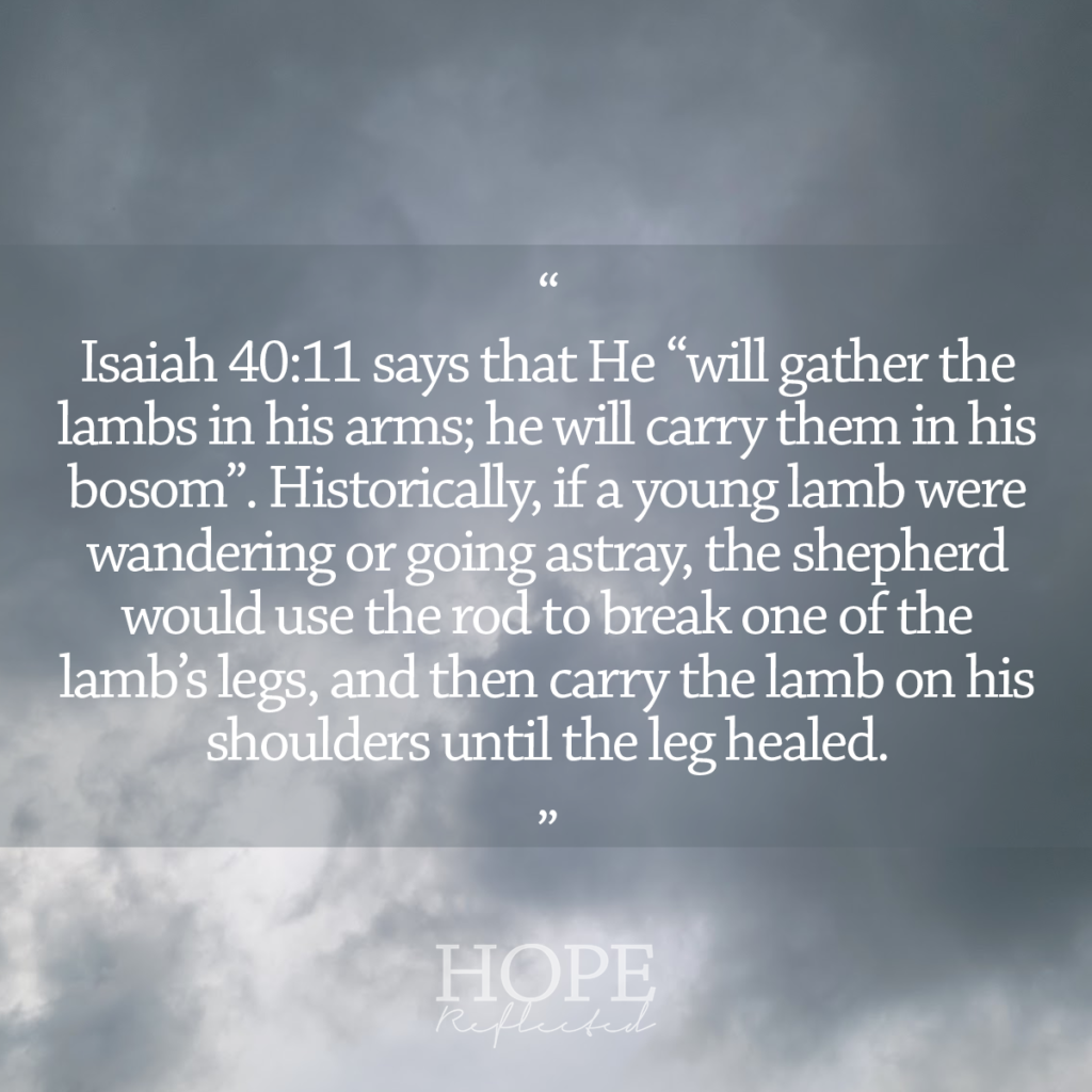 """""""He will gather the lambs in his arms; he will carry them in his bosom."""" (Isaiah 40:11) See more at hopereflected.com"""