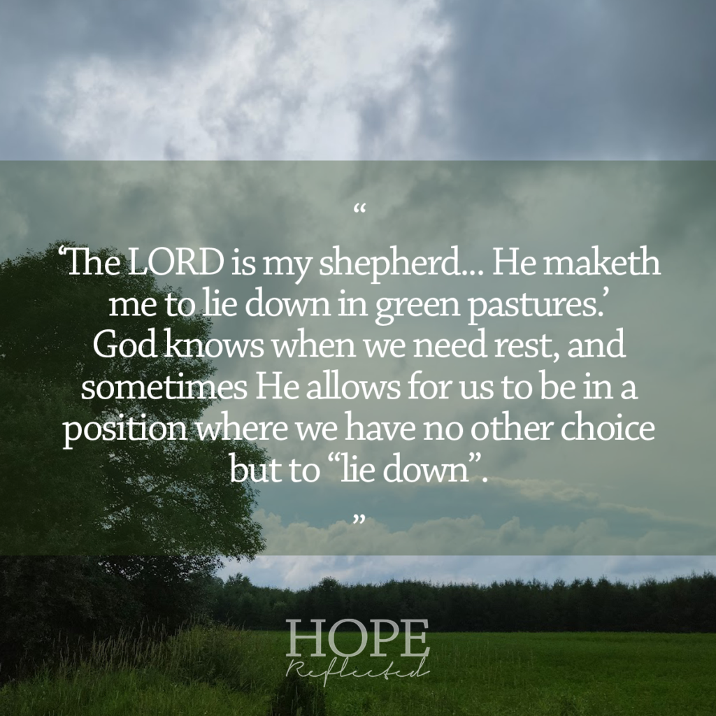 """""""The LORD is my shepherd...He maketh me to lie down in green pastures."""" Psalm 23:1,2 Read more at hopereflected.com"""