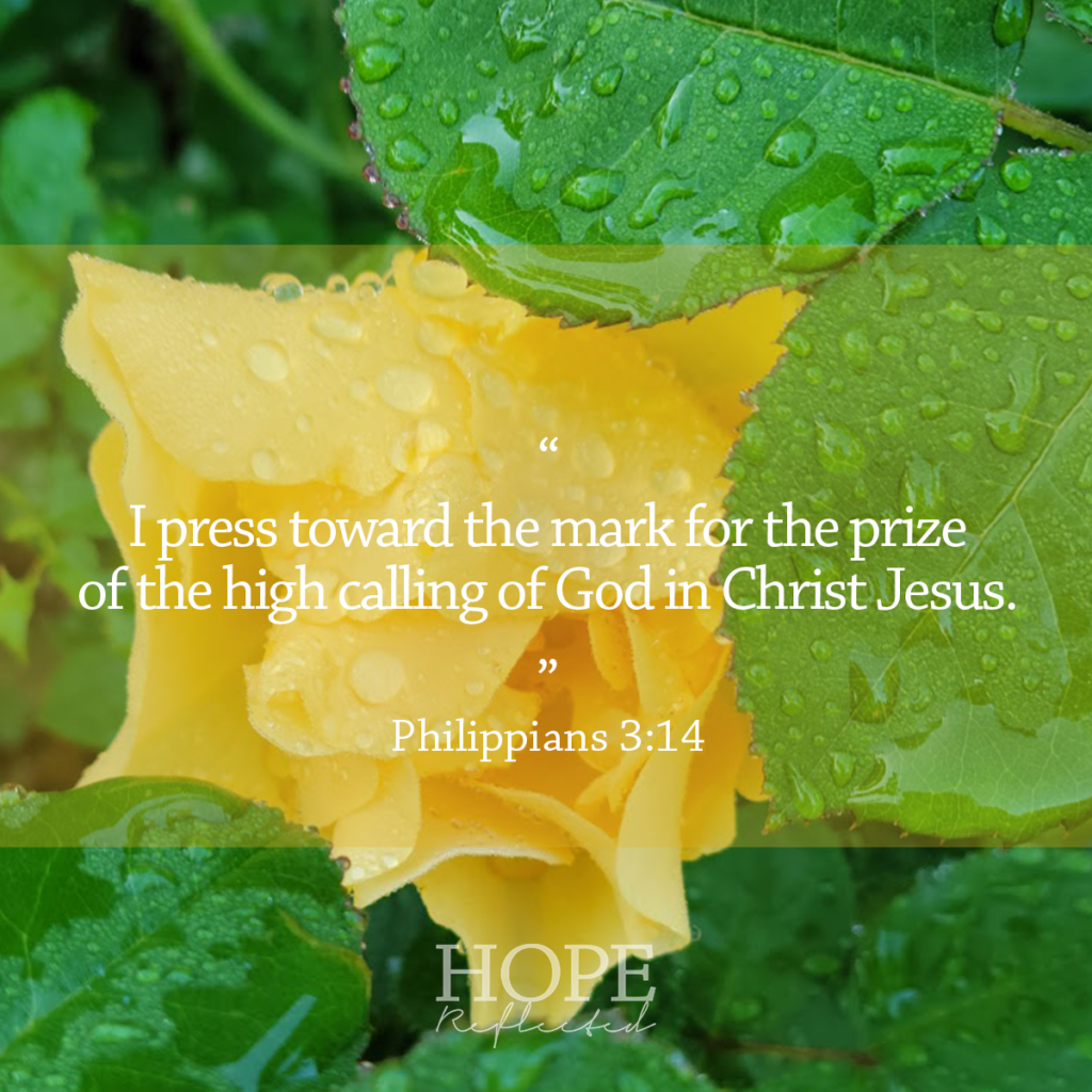 """""""I press toward the mark for the prize of the high calling of God in Christ Jesus,"""" (Philippians 3:14) 