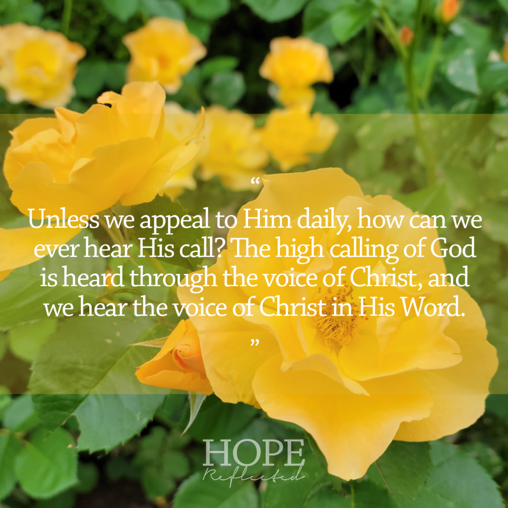 Unless we are appealing to Him daily, how can we ever hear His call? The high calling of God is heard through the voice of Christ, and we hear the voice of Christ in His Word. Read more at hopereflected.com