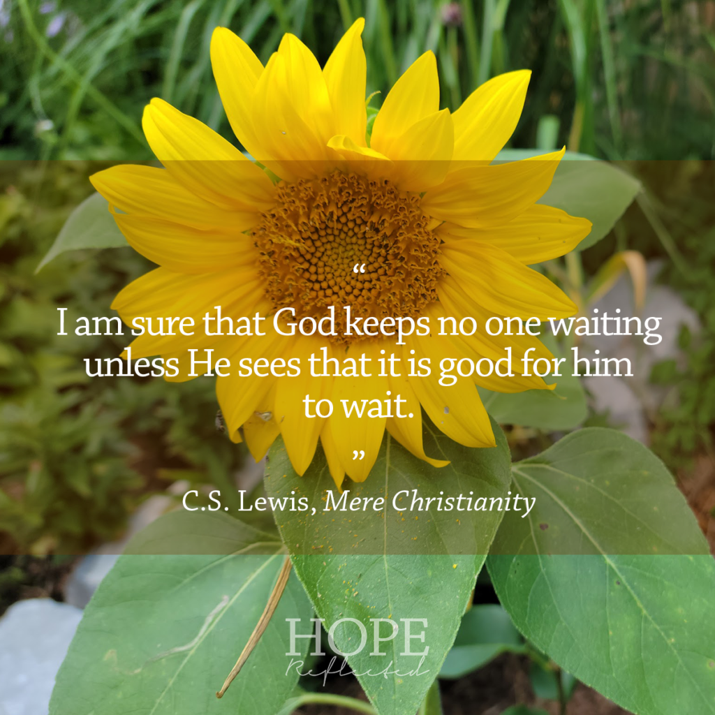 """""""I am sure that God keeps no one waiting unless He sees that it is good for him to wait."""" C.S. Lewis, Mere Christianity 