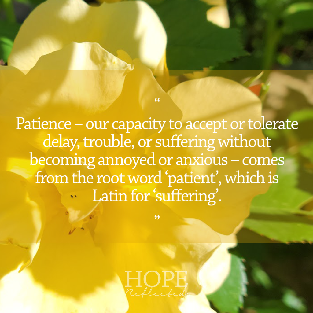 Patience - our capacity to accept or tolerate delay, trouble, or suffering without becoming annoyed or anxious - comes from the root word 'patient', which is Latin for 'suffering'. Read more on hopereflected.com