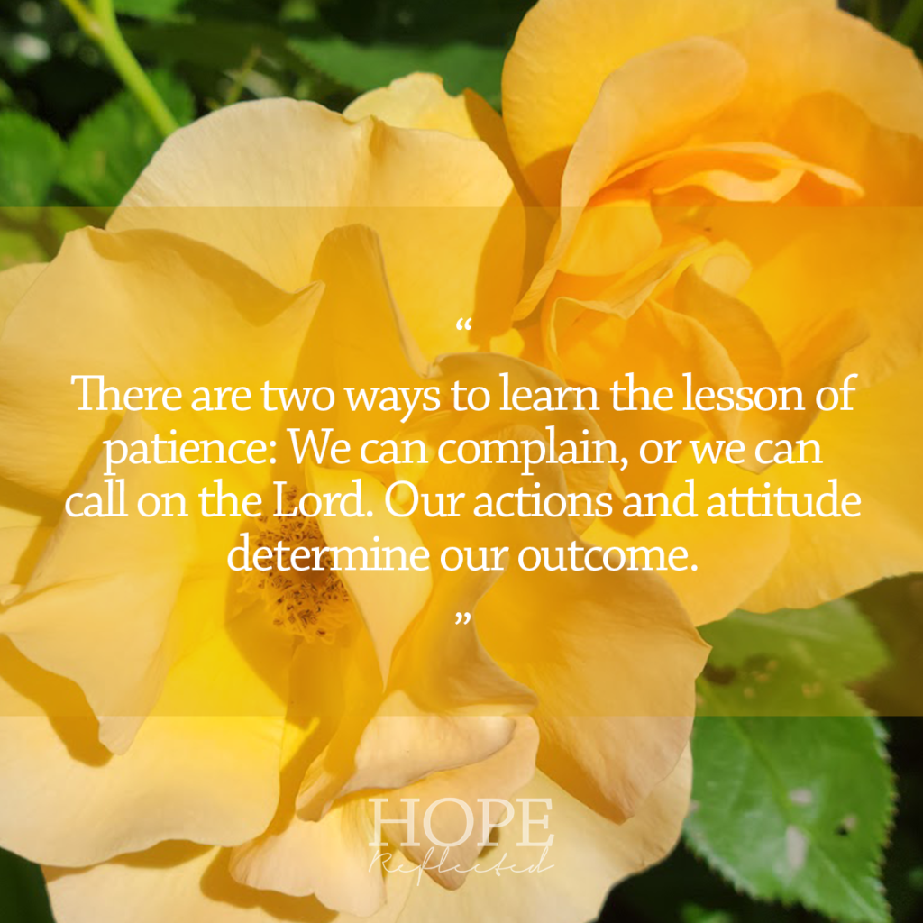 There are two ways to learn the lesson of patience: We can complain, or we can call on the Lord. Our actions and attitude determine our outcome. Read more on hopereflected.com