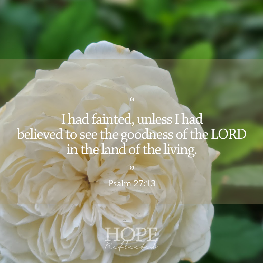 """""""I had fainted, unless I had believed to see the goodness of the LORD in the land of living."""" (Psalm 27:13) Read more on hopereflected.com"""