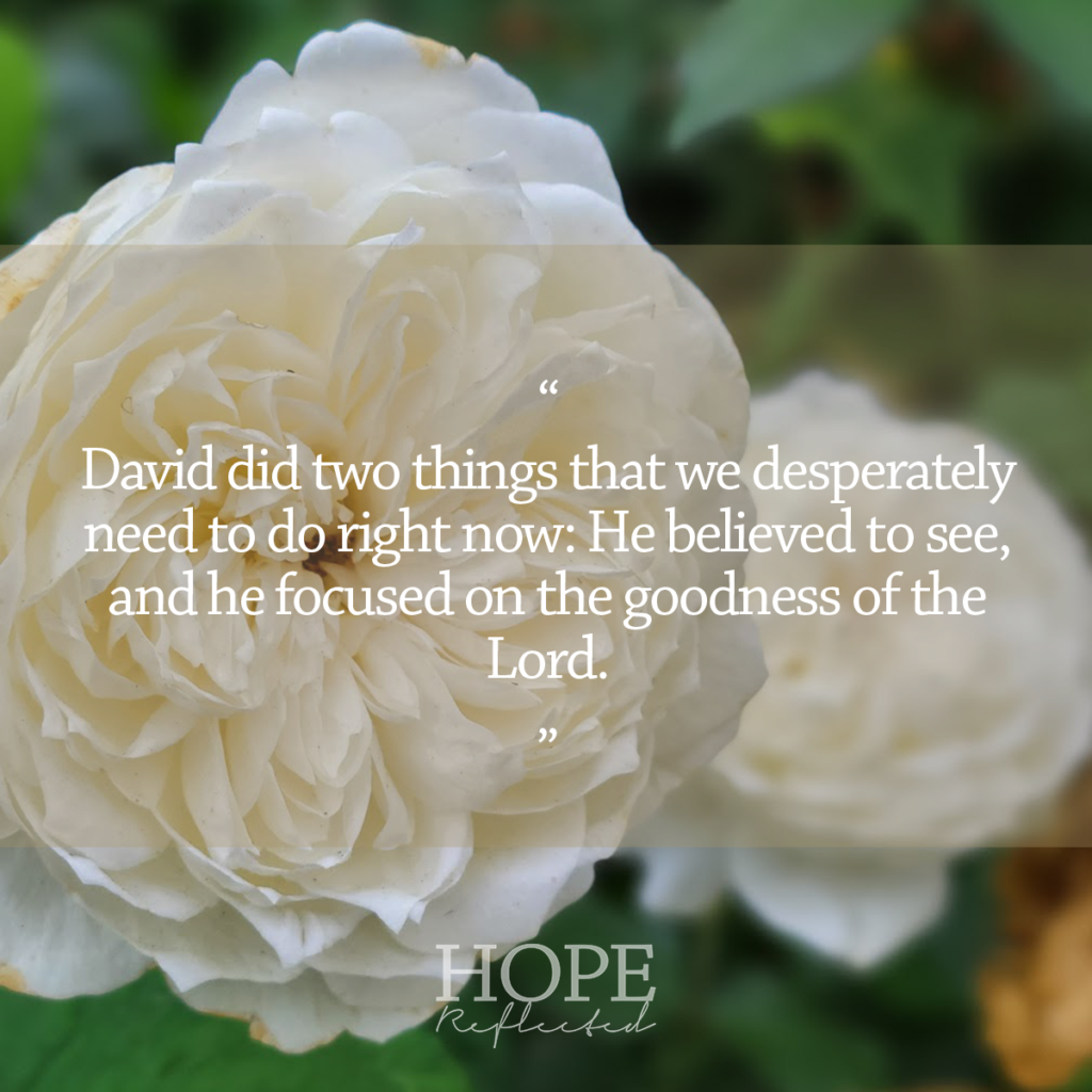 David did two things that we so desperately need to do right now: He believed to see, and he focused on the goodness of the Lord. Read more on hopereflected.com