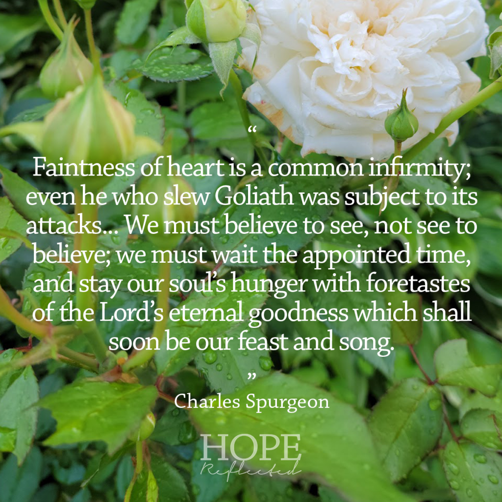 """""""We must believe to see, not see to believe,"""" (Charles Spurgeon) Read more on hopereflected.com"""
