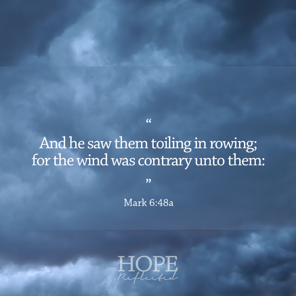 """""""And he saw the toiling in rowing; for the wind was contrary to unto them:"""" (Mark 6:48a) 