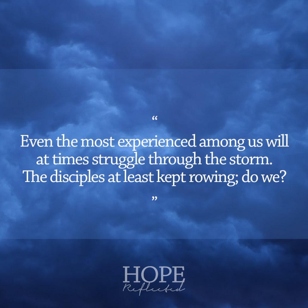 Even the most experienced among us will at times struggle through the storm. The disciples at least kept rowing; do we? | Read more at hopereflected.com